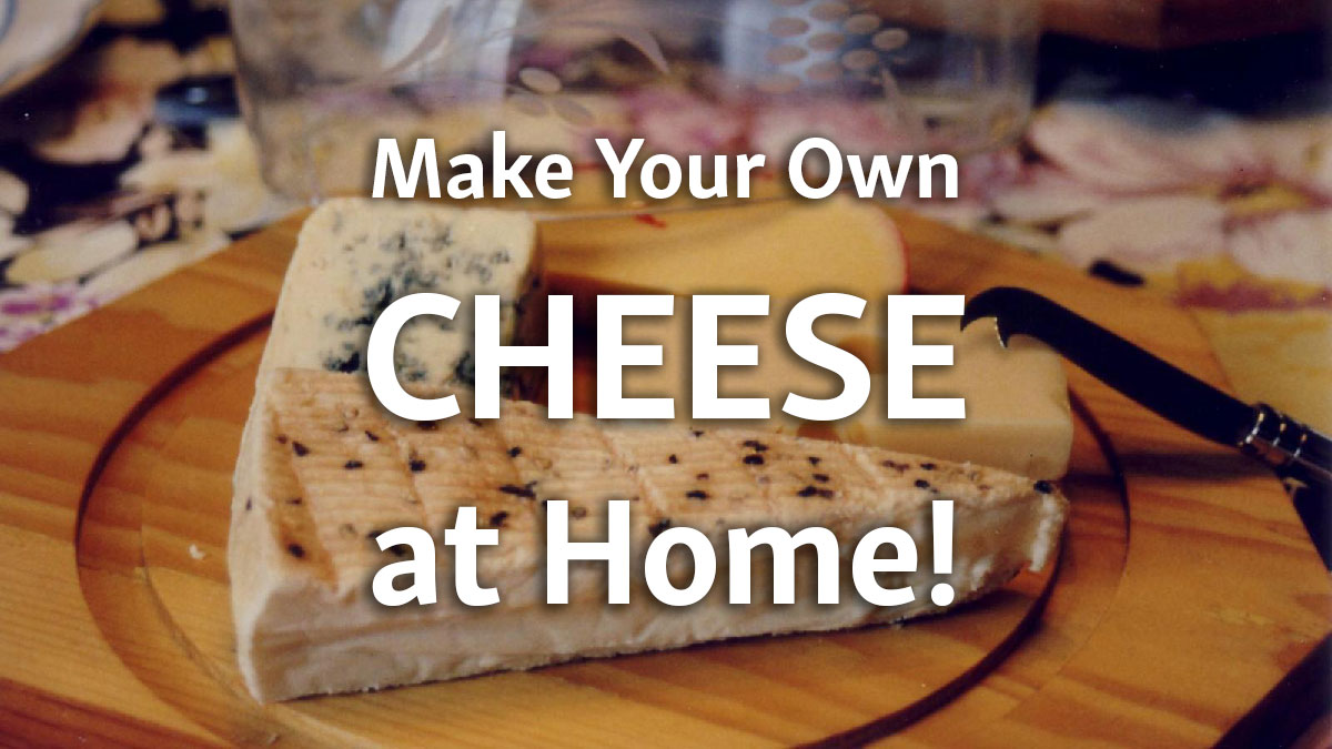 Make Your Own Cheese at Home!